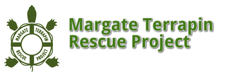 Margate Terrapin Rescue Project